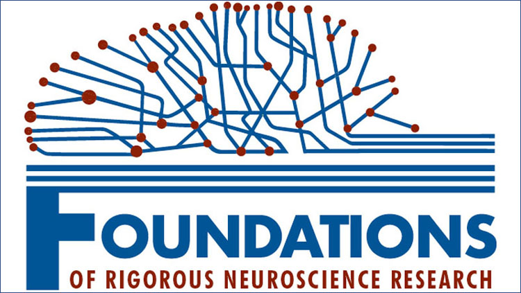 """Image of a brain made up of blue outlines above the words """"Foundations of Rigorous Neuroscience Research"""""""
