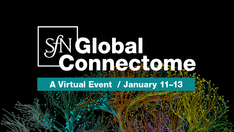 SfN Global Connectme: A Virtual Event logo on scientific image; January 11-13