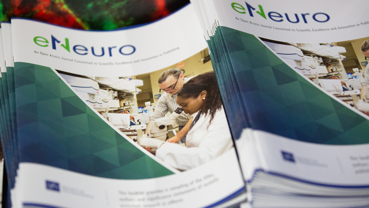 A stack of eNeuro printed editions