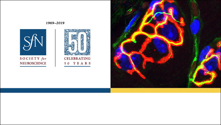 SfN 50th Anniversary Logo and generic science image