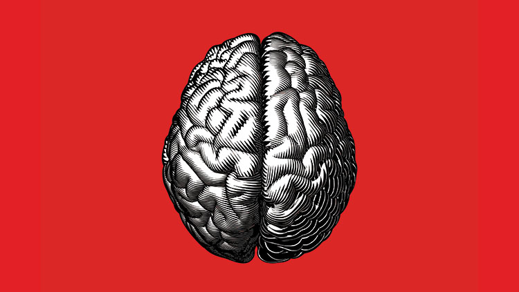 gray image of a brain on a red background.
