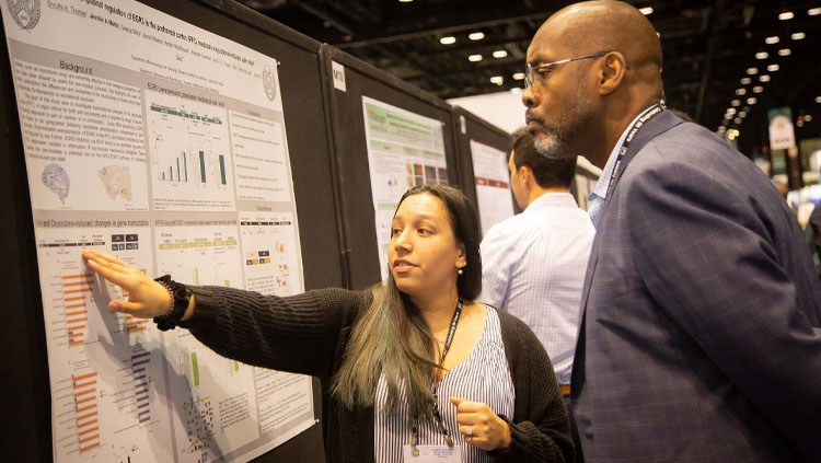 Image of a girl pointing to a poster and talking while a man listens intently